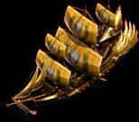 Champion ship.png
