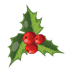 christmas_mistletoe_icon.png