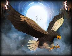 Sea Eagle.jpg