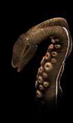 tentakel.png
